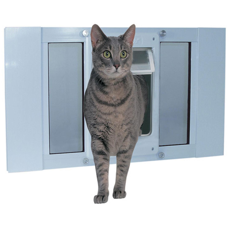Chubby cat sash window door