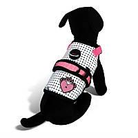 Avant Garde Couture Princess Dog Harness