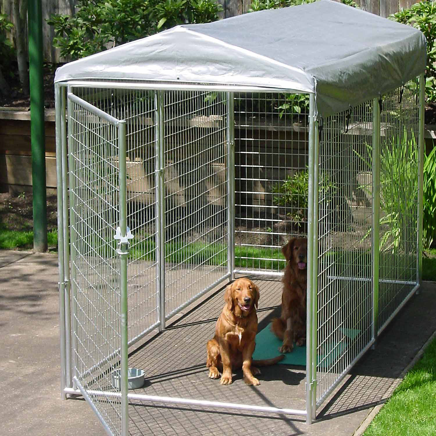 8 Best Dog Crates For Large Dogs