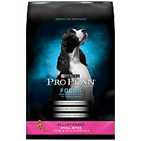 Pro Plan Focus Small Bites Lamb & Rice Dog Food