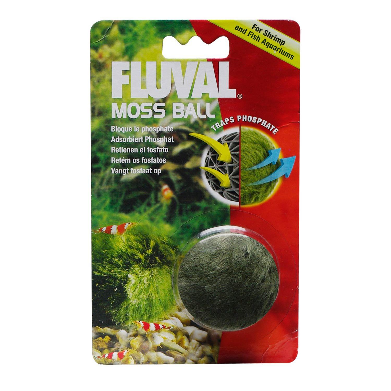 Fluval moss ball ornament petco for Moss balls for fish tanks