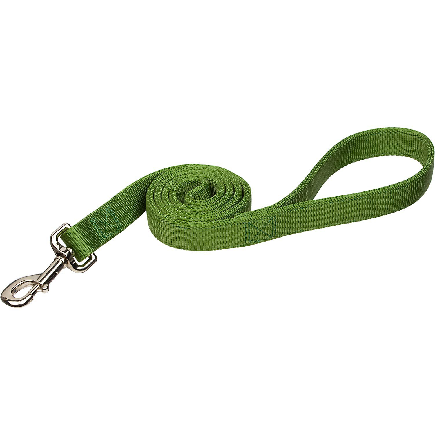 Coastal Pet Double Ply Nylon Personalized Dog Leash in Palm Green