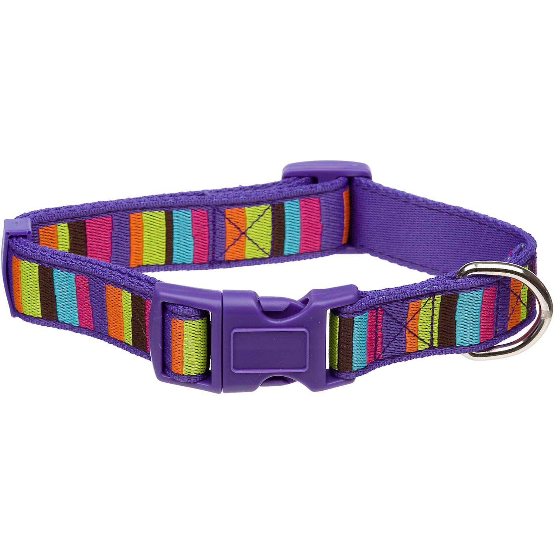 Planet Petco Adjustable Striped Eco Dog Collar in Purple