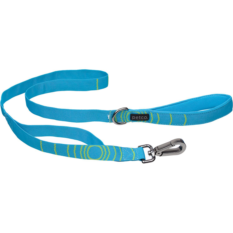 "Petco Sport Dog Leash in Blue & Green 1"" Width"