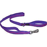 Petco Sport Dog Leash in Purple & Pink, 1' Width