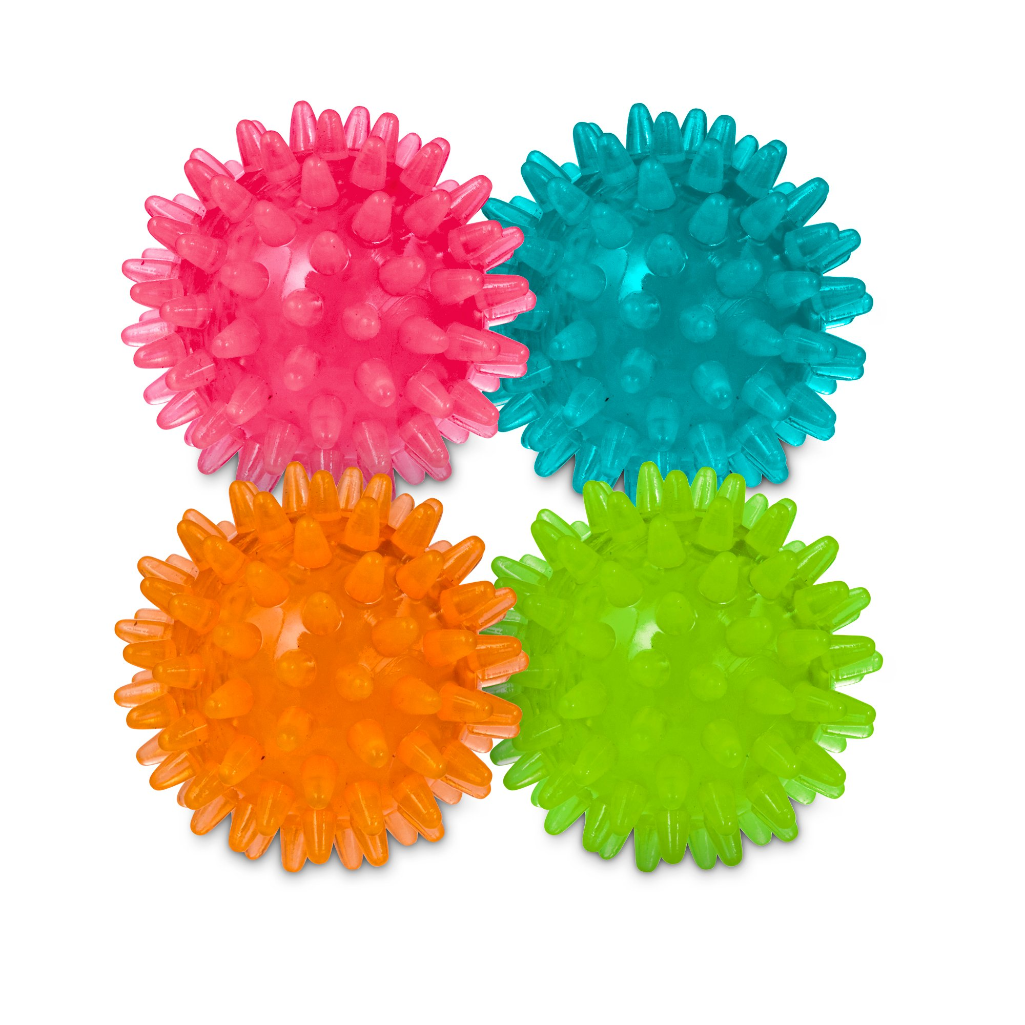 Spiny Ball Dog Toy