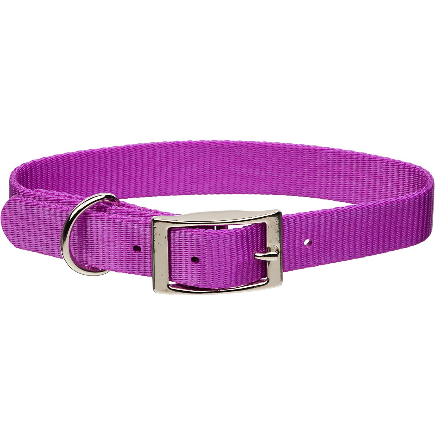 Nylon Dog Collar With Metal Buckle
