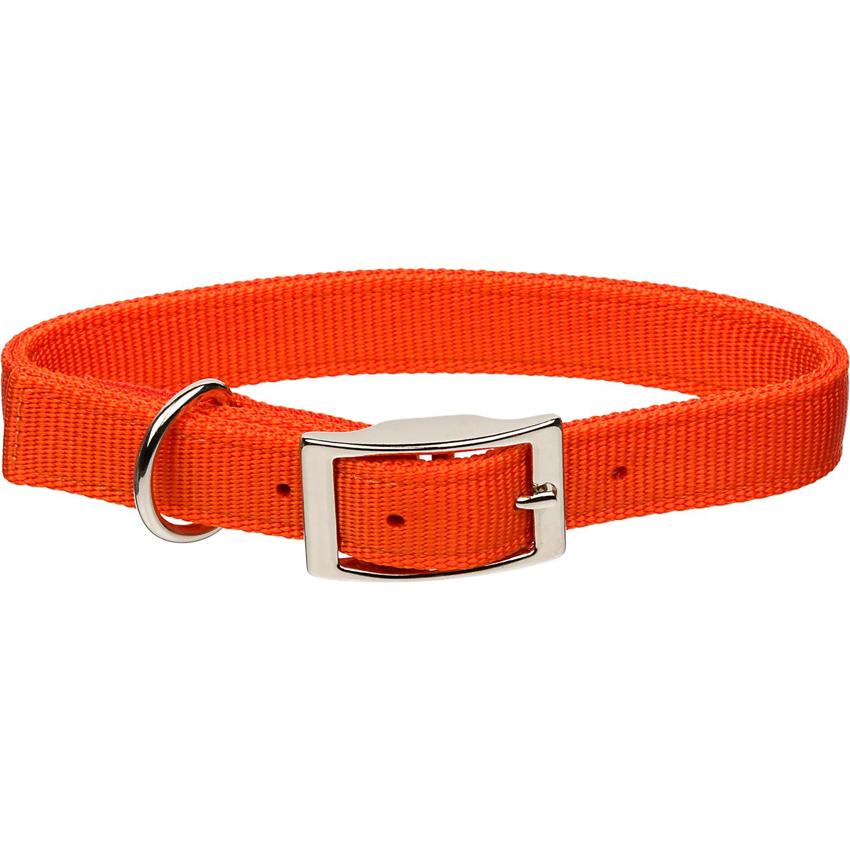 Nylon  Ply Buckle Dog Collar