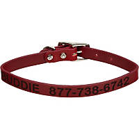 Coastal Pet Personalized Leather Collar in Red