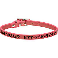 Coastal Pet Personalized Leather Collar in Pink