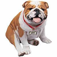 Sandicast Fawn Bulldog Life Size Figurine