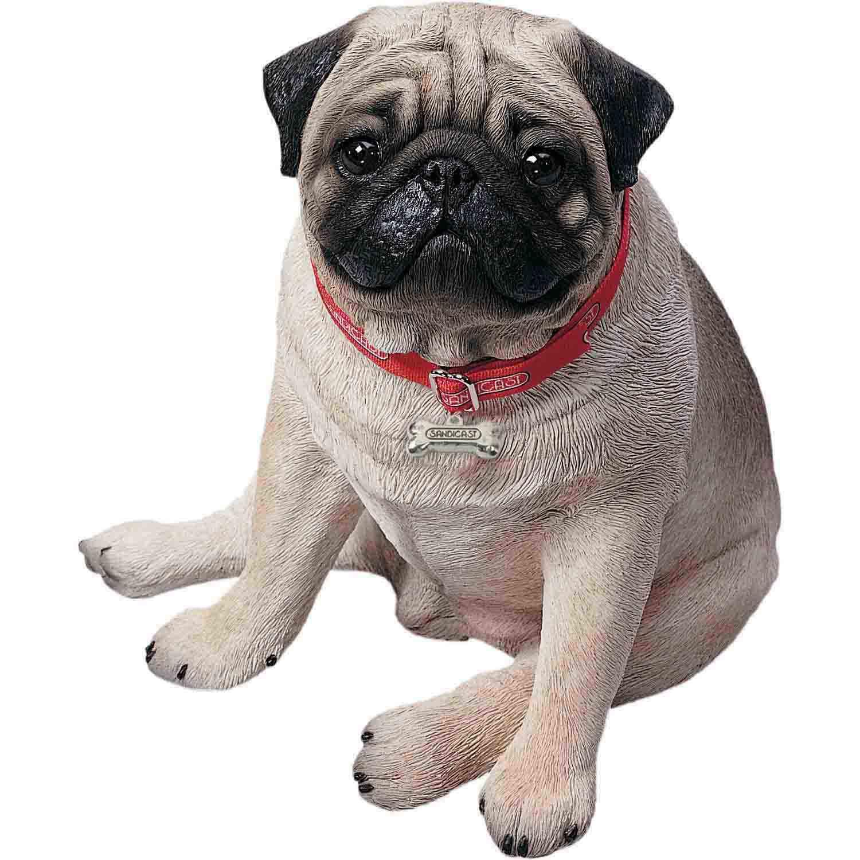 Sandicast Fawn Pug Life Size Figurine