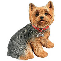 Sandicast Fawn Yorkshire Terrier Life Size Figurine