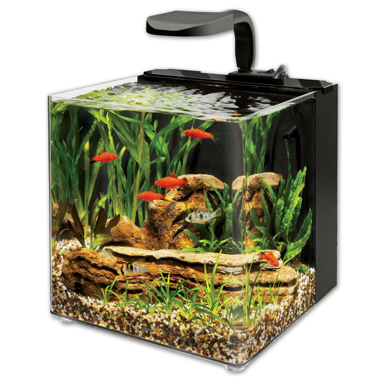 Aqueon Evolve LED Aquarium Kit