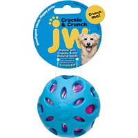 JW Pet Crackle Ball Dog Toy