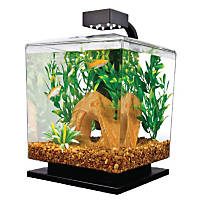 Tetra 1.5 Gallon LED Desktop Aquarium Kit