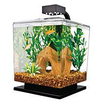 aquariums & kits