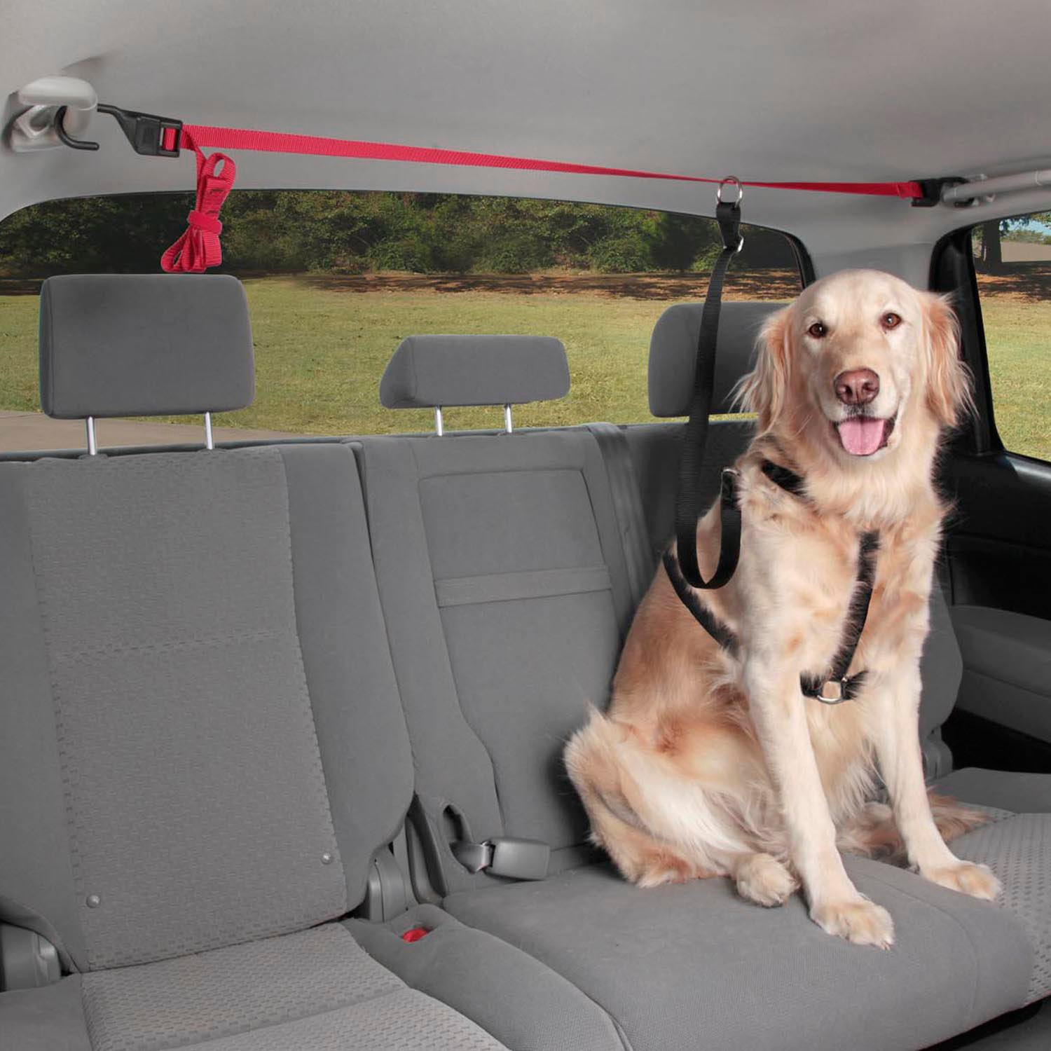 solvit pup zip zipline dog seat belt petco. Black Bedroom Furniture Sets. Home Design Ideas
