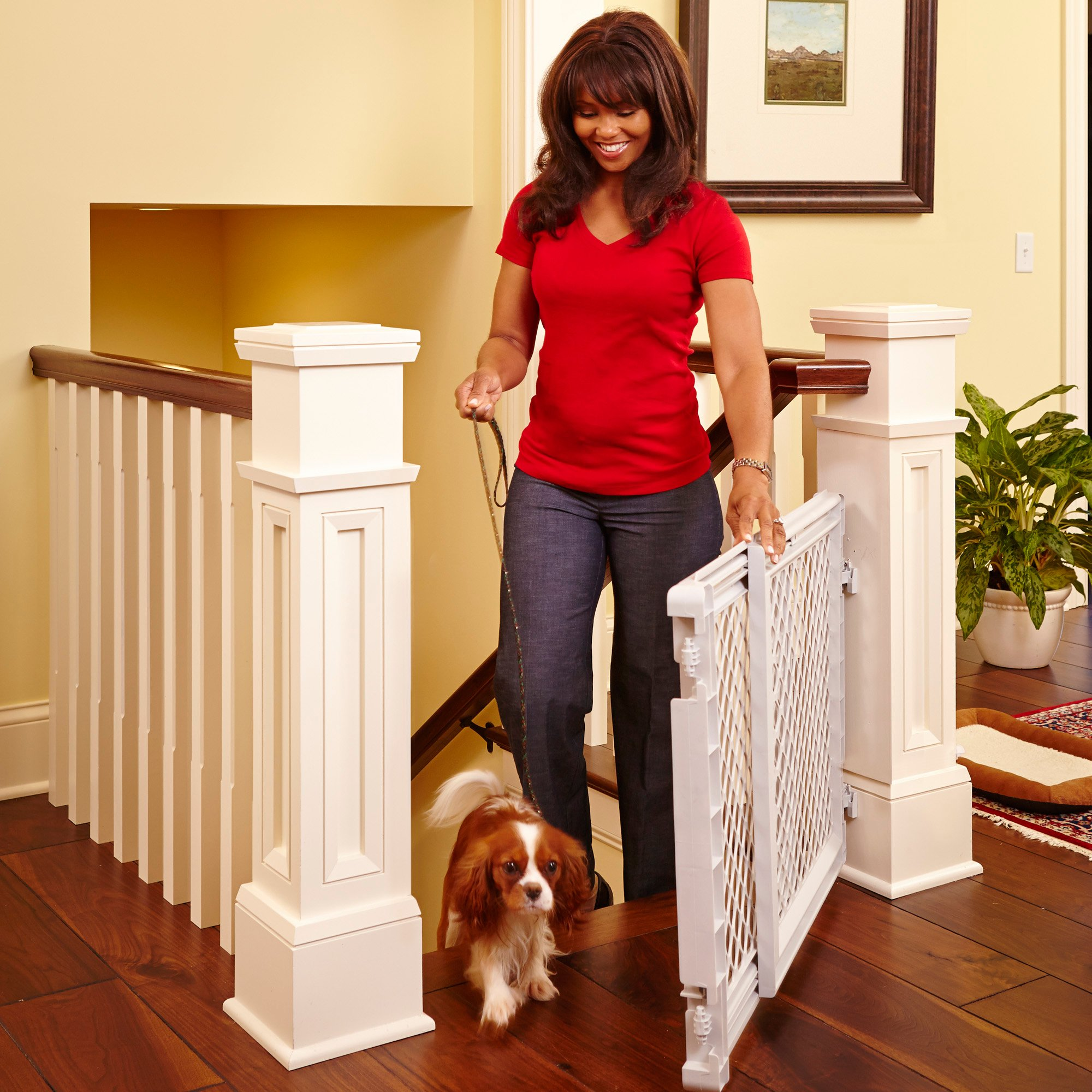 North States Stairway Pet Gate