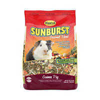 Higgins Sunburst Gourmet Guinea Pig Food Mix