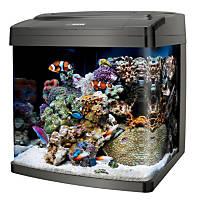 Coralife BioCube PC/LED Fish Tank