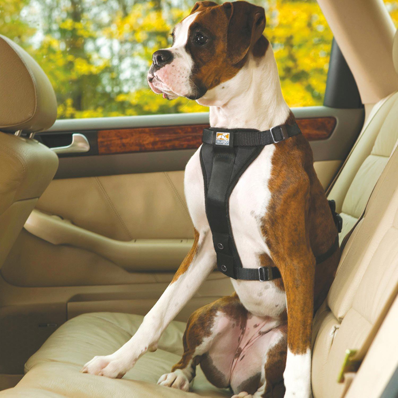 Kurgo Black Tru Fit Smart Quick Release Dual Walking Harness & Seat Belt Harness