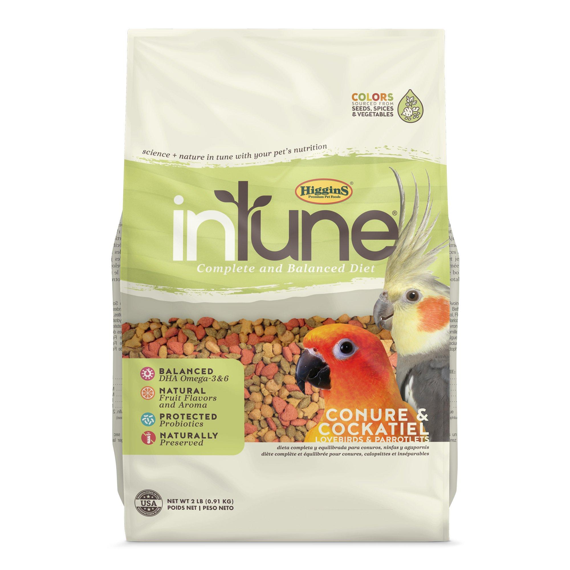 Higgins InTune Natural Food Mix for Conures & Cockatiels