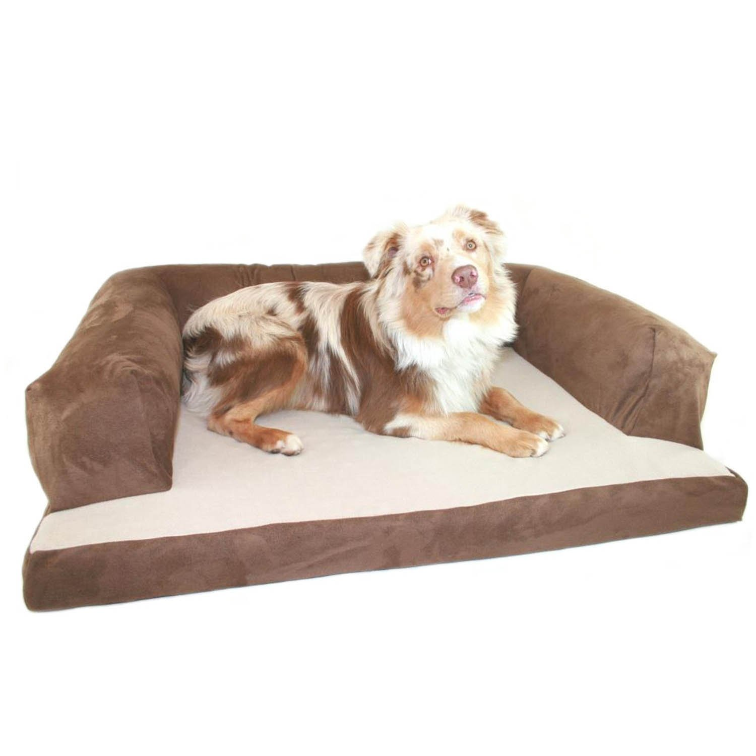 Hidden Valley Chocolate Dog Couch