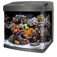 Coralife BioCube PC/LED Fish Tank