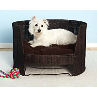 The Refined Canine Indoor Dog Day Bed in Espresso