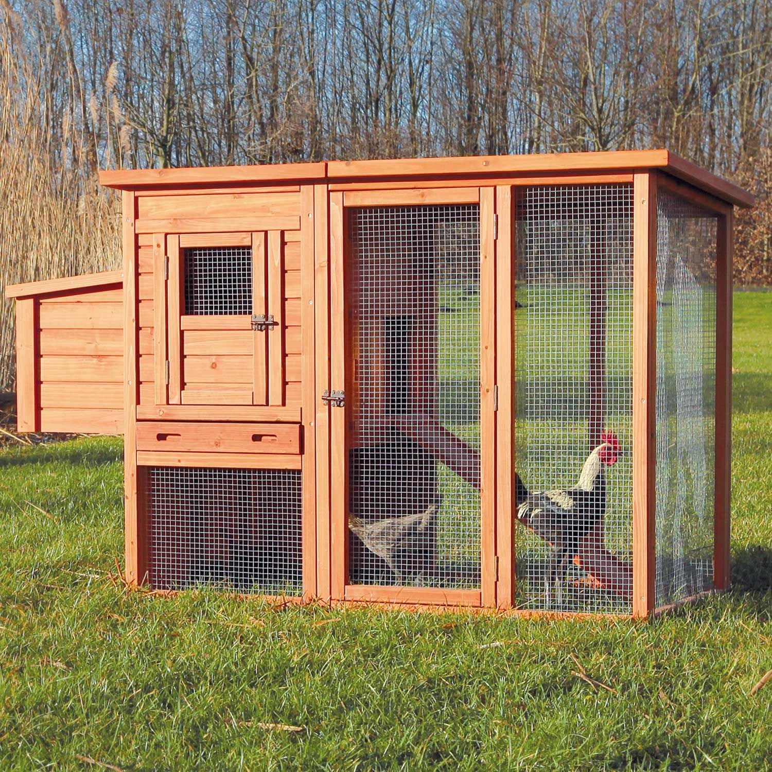 Trixie Natura Flat Roof Chicken Coop With Outdoor Run Petco