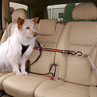 Kurgo Black Auto Zip Line Dog Seat Belt