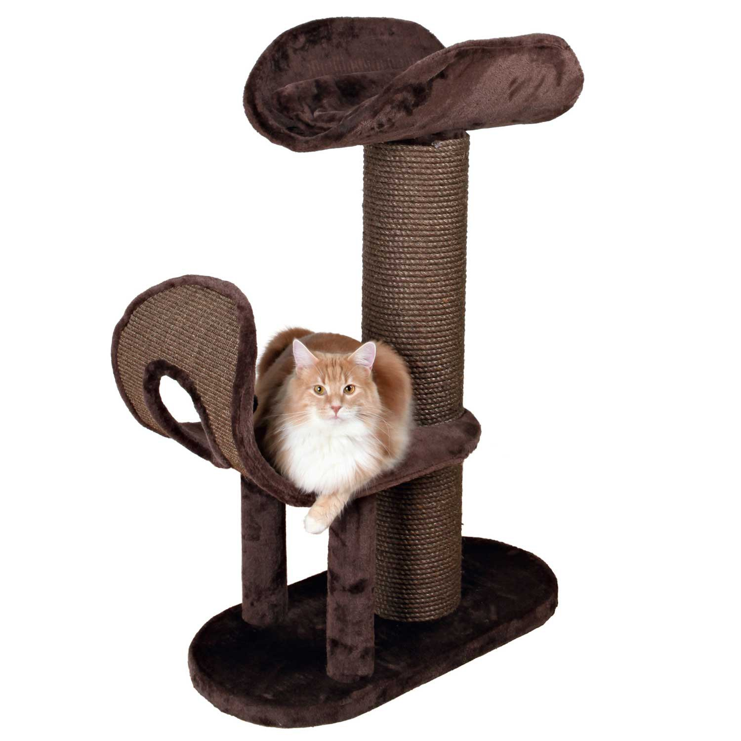 Trixie Ramirez Cat Tree in Chocolate Brown