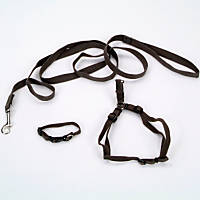 Coastal Pet New Earth 3-Piece Soy Dog Leash Harness and Collar Bundle in Dark Green
