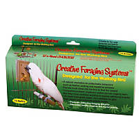 Caitec Creative Foraging Systems Large Foraging Box Refills