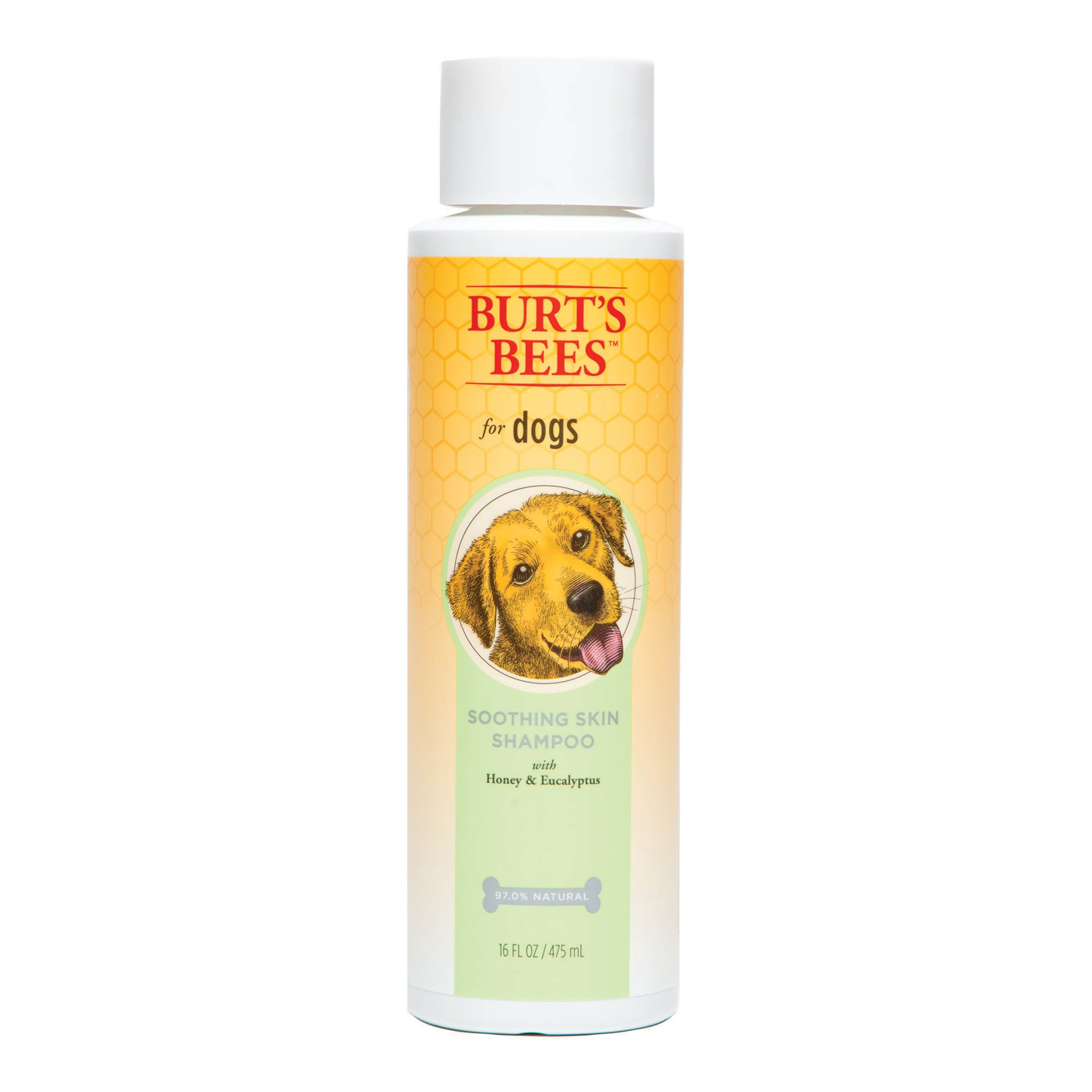 Burt's Bees for Dogs Soothing Skin Shampoo