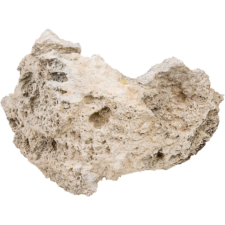 North American Pet Lace Rock