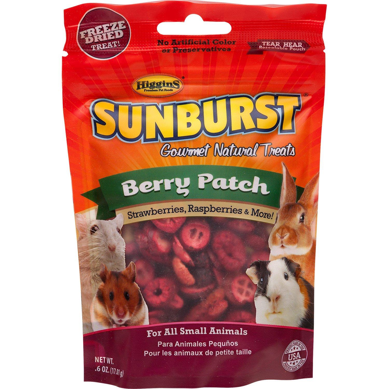 Higgins Sunburst Berry Patch Gourmet Treats for Small Animals