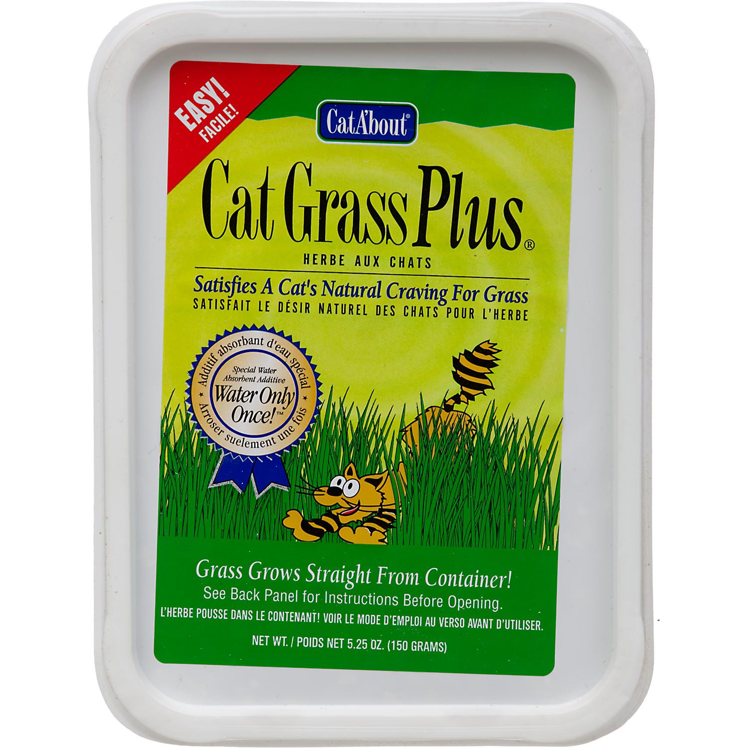 CatA'bout Cat Grass