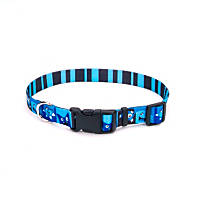 Petco Blue Happy Monster Nylon Adjustable Dog Collar