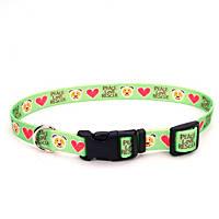 Petco Love Rescue Peace Nylon Green Adjustable Dog Collar