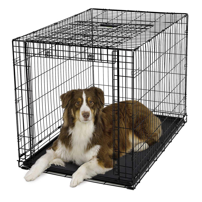 Midwest Ovation Single Door Folding Dog Crate 42 43.75 L X 28.25 W X 30.25 H Large Black