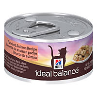 Hill's Ideal Balance Poached Salmon Recipe Canned Adult Cat Food