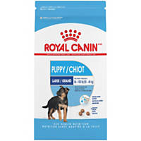 Royal Canin MAXI Large Breed Puppy Food