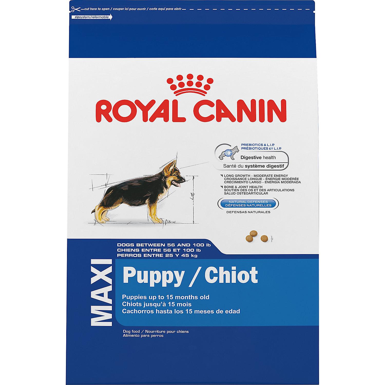 Royal Canin Mini Aging  Plus Senior Dog Food