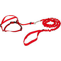 PetSafe Gentle Leader Come with Me Kitty Harness & Bungee Leash in Red