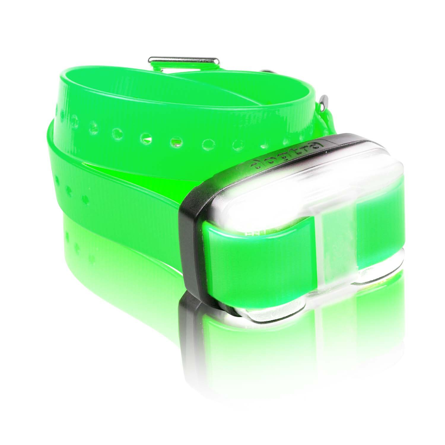 Dogtra Edge Add-On Receiver Dog Training Collar in Green
