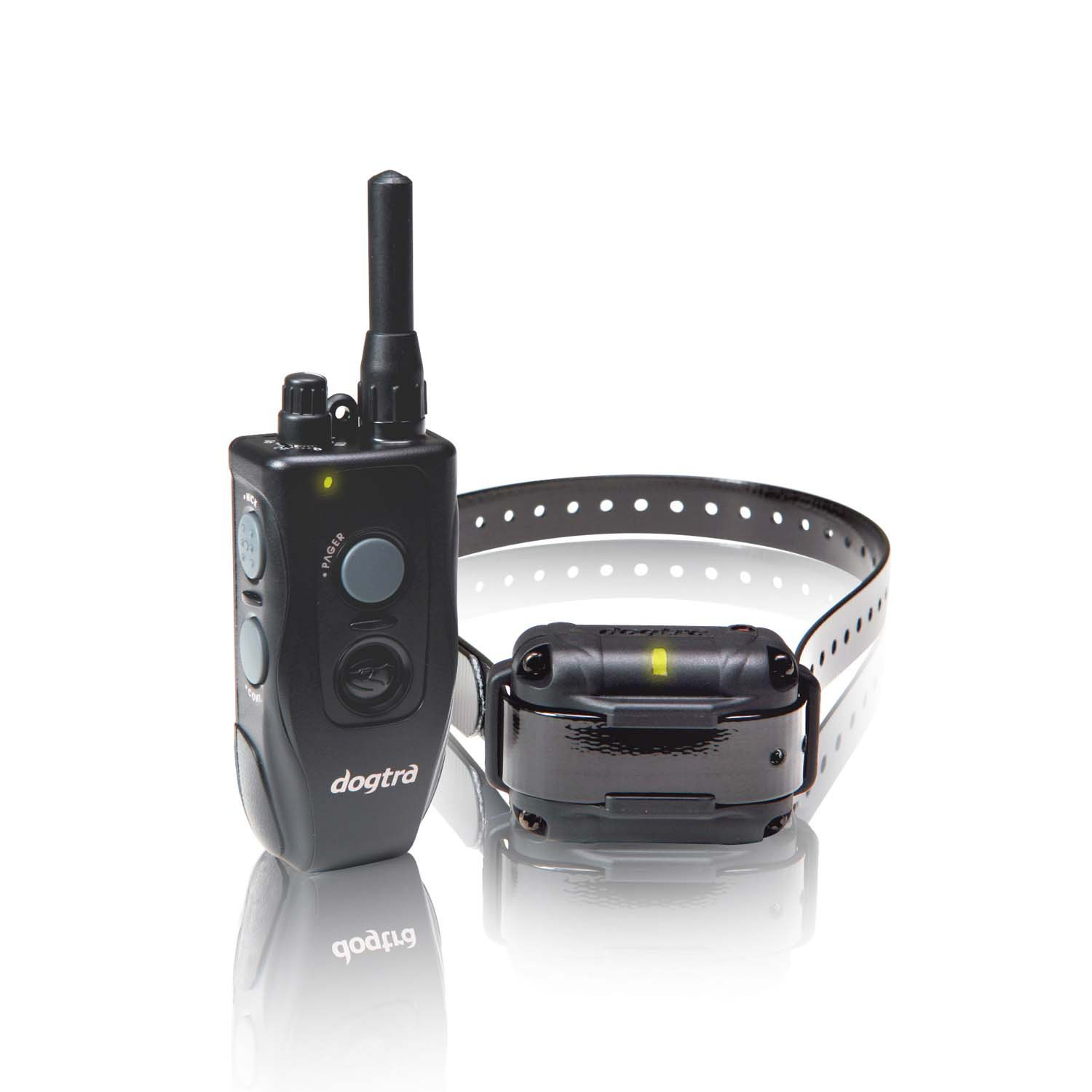 Dogtra Element 300M Dog Remote Trainer