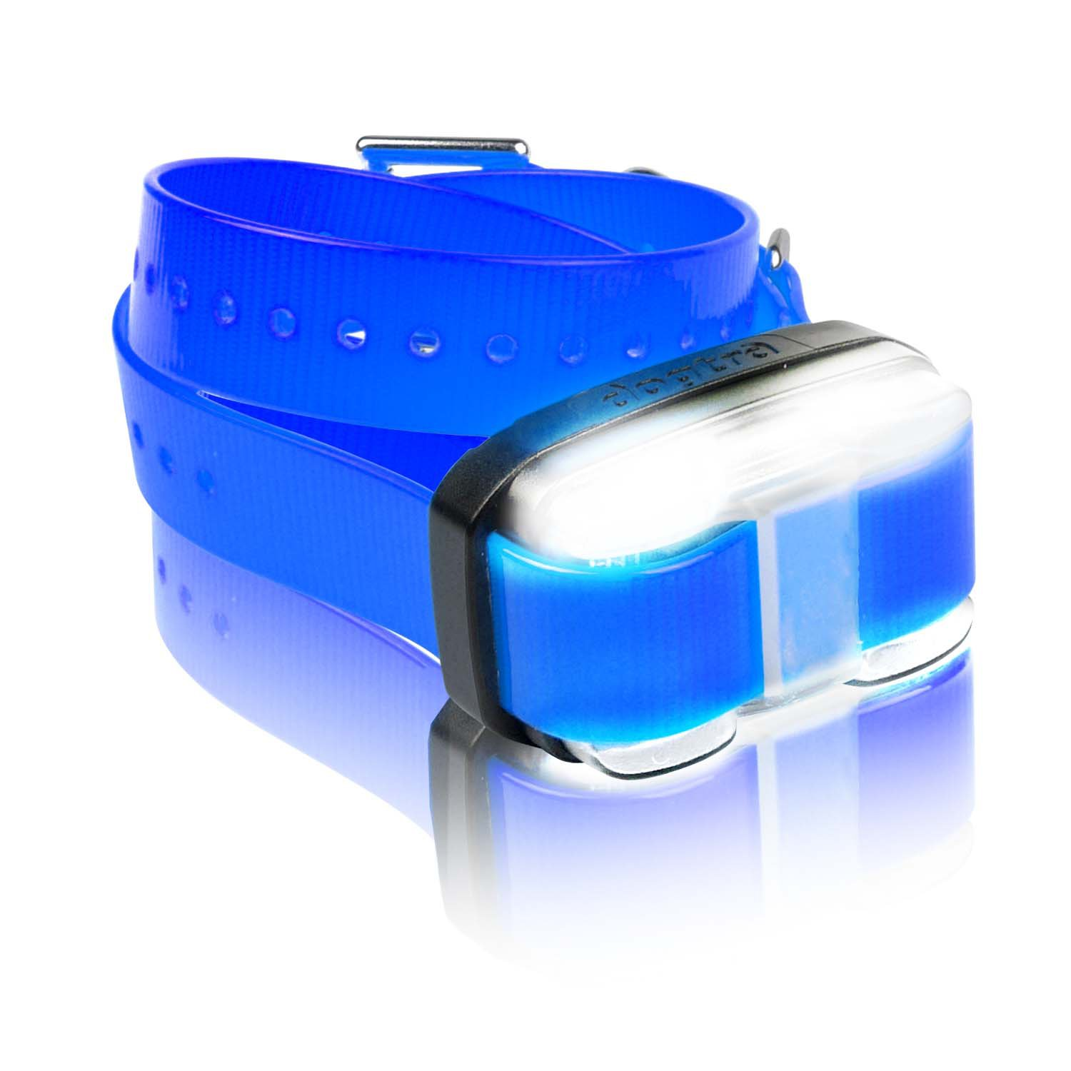 Dogtra Edge Add-On Receiver Dog Training Collar in Blue