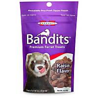 Marshall Pet Products Bandits Premium Raisin Ferret Treats